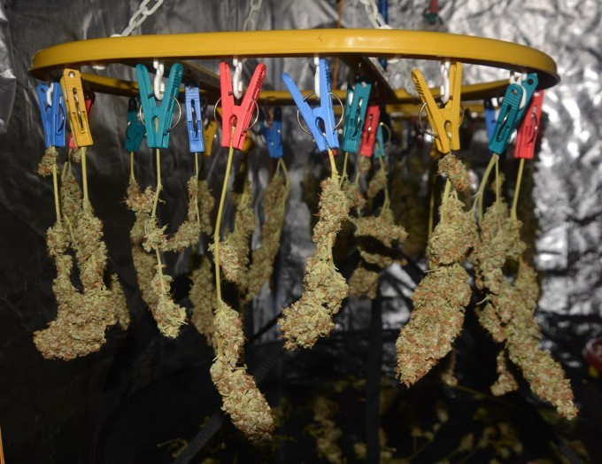 day 138 BA drying 6.JPG